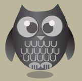 Cute Owl Stock Photos