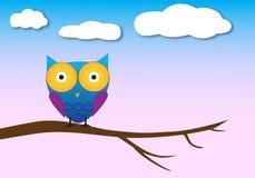 Cute owl night background Stock Photos