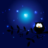 Cute owl in the night sitting on branch - vector Royalty Free Stock Photo