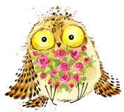 Cute owl. Owl watercolor illustration. Owl T-shirt print. Greeting Card. Stock Image