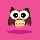 Cute owl Stock Images
