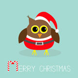 Cute owl in Santa Claus costume, hat. Snowflakes. Merry Christmas Card. Flat design. Stock Photography