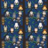 Cute owl seamless pattern. Cartoon style bird Stock Photography