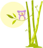 Cute owl sitting on bamboo. Illustration of isolated cute owl sitting on bamboo tree stock illustration