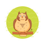 Cute owl sitting on a branch Stock Images