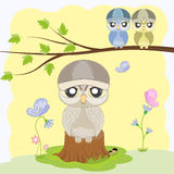 Cute owl sitting on a fat tree stump. Royalty Free Stock Images