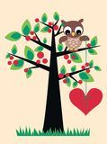 A cute owl sitting in a tree royalty free illustration