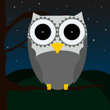 Cute owl sitting on a tree with night sky as a background Royalty Free Stock Photos