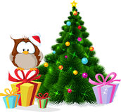Cute owl sitting by xmas tree - vector Stock Photography