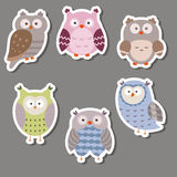 Cute owl stickers. Owls made in cartoon style Stock Photo