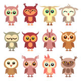 Cute owl vector flat characters set. Illustration of cartoon bird owl Royalty Free Stock Photo