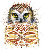 Cute Owl. Watercolor Owl. Owl Tee Shirt illustration. Stock Images