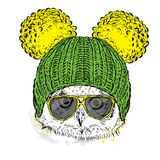 Cute owl wearing a hat and sunglasses. Illustration for a card or poster. Vector illustration. Bird. vector illustration