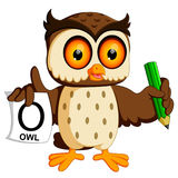 Cute owl writing. Illustration of cute owl writing Stock Photography