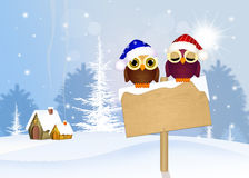 Cute owls with Christmas hat Stock Image