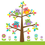 Cute owls on colorful tree and flowers Royalty Free Stock Image