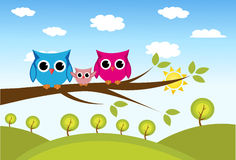 Cute owls couple with baby owl Royalty Free Stock Photo