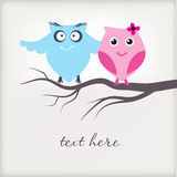 Cute owls couple in love Stock Photo