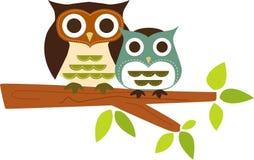 Cute owls Stock Photos