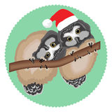 Cute owls with Santa hat Royalty Free Stock Images