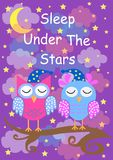 Cute owls sleep under the stars, good night card. vector illustration vector illustration