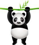 Cute panda. Illustration of cute panda cartoon Stock Photography