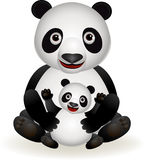 Cute panda and baby panda. Illustration of cute panda cartoon and baby panda Royalty Free Stock Images