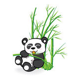 Cute Panda Bear in Bamboo Forrest 02 Royalty Free Stock Photos