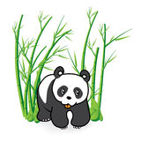 Cute Panda Bear in Bamboo Forrest 04 Stock Images