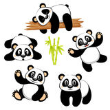 Cute panda bear with different emotions  on white background Royalty Free Stock Image