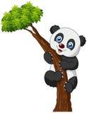 Cute panda cartoon climbing tree Stock Photos