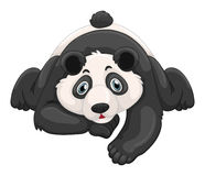 Cute panda crawling on the ground. Illustration Stock Photos