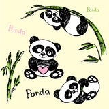 Cute Panda in different poses, hand drawing Royalty Free Stock Photo