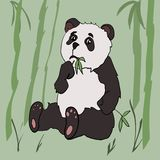 Cute panda eat bamboo. Drawn in cartoon style Royalty Free Stock Images