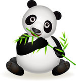 Cute panda eating bamboo Royalty Free Stock Photography