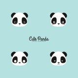 Cute panda faces Stock Image