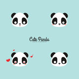 Cute panda faces. Abstract cute panda faces on a blue background vector illustration
