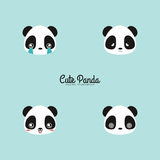 Cute panda faces. Abstract cute panda faces on a blue background royalty free illustration