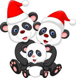 Cute panda family cartoon wearing red hat Stock Photo