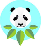 Cute panda in flat style. Fashion illustration of a panda in gre. En leaves Stock Images
