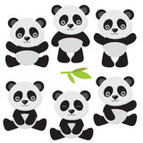 Cute panda vector illustration Stock Images