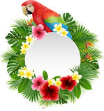 Cute parrot with blank sign on plant background vector illustration