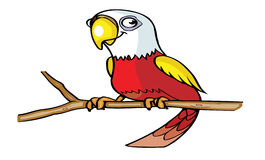Cute parrot cartoon Stock Image