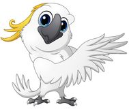 Cute parrot cockatoo cartoon posing Royalty Free Stock Photo