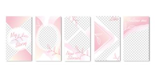Cute Pastel Pink Templates with Branch of Leaves. Cute Pastel Pink Color Templates with Branch of Leaves Banners Vector Illustration. Follow me. Different vector illustration