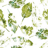 Cute pattern of beautiful prints of leaves. Vector Stock Image