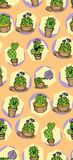 Cute pattern, print, cactus, freehand drawing Stock Photo