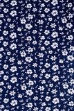 Cute pattern in small white flower. Royalty Free Stock Photo