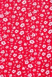 Cute pattern in small white flower. Royalty Free Stock Photography