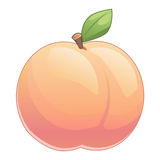 Cute peach with leave. Vector illustration of cute cartoon peach with leave vector illustration